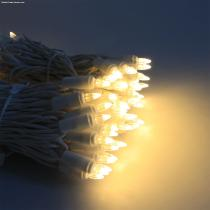 100 WW ROCKET LED light string