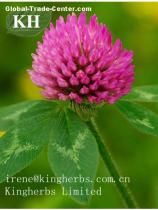 Red Clover Extract Formononetin