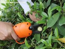 Electric Pruning Shear(GYH-8501)