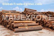 SELL LOGS OF PINE AND SPRUCE