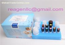 Ractopamine ELISA Test Kit