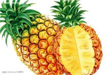 100% Natural Pineapple Powder/ Instant Pineapple Juice Powder/ Spray Dried Pineapple Powder