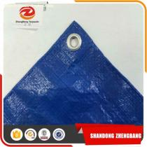 China Hot Sale Low Price Pe Tarpaulin In Various Sizes