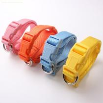 High quality and hot selling eco-friendly dog collar
