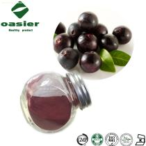 Natural Plant Extract Acai Berry Extract, Acai Berry Powder