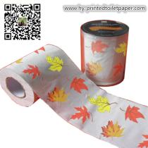 gift printed toilet paper