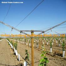 Vineyard Use Open Gable Trellis System with All Accessories