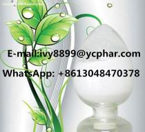 DHA Powder Schizochytrium