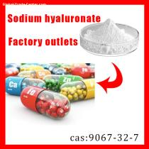 Hyaluronic Acid CAS:9004-61-9 with 99% Made by Manufacturer
