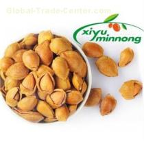 Apricot Kernels Dried Nuts Natural Additive Free with Premium Quality in Bulk for Sale