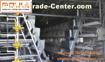 Chicken Farm Steel Sheet Silver White Small Chicken Cage & Brooding Chicken Coop System with Feeding&Drinking System