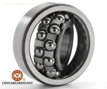 China High Precision Self-Aligning Ball Bearing for Paper Machinery, Printing Machine Bearing1206,1207,1208,1209,1210,2210,2216,2309,2311