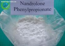 Nandrolone Phenylpropionate Raw Steroids Powder for Bodybuilding