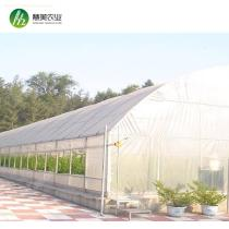 High quality galvanized steel pipe polytunnel commercial greenhouse for sale