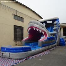 5006317- Inflatable Amusement Park Large Adult Inflatable Shark Water Slides for Kids