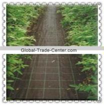 with UV HDPE agricultural ground cover